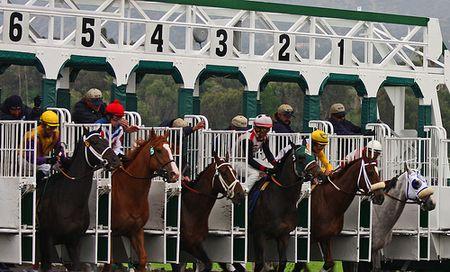 guindy-race-course